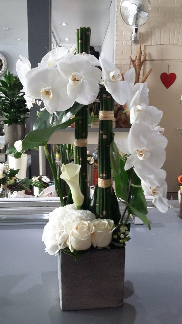 Composition branche d'orchidée